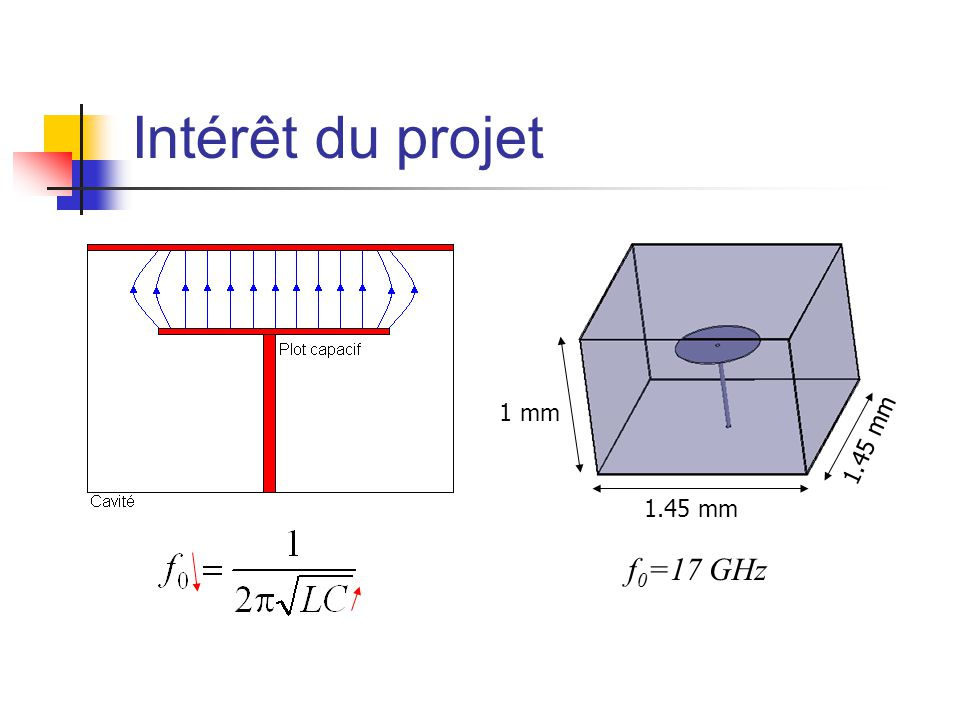 Intérêt du projet 1 mm 1.45 mm 1.45 mm f0=17 GHz