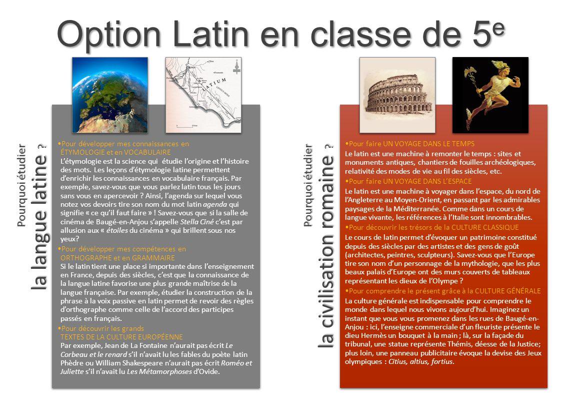 Option Latin en classe de 5e