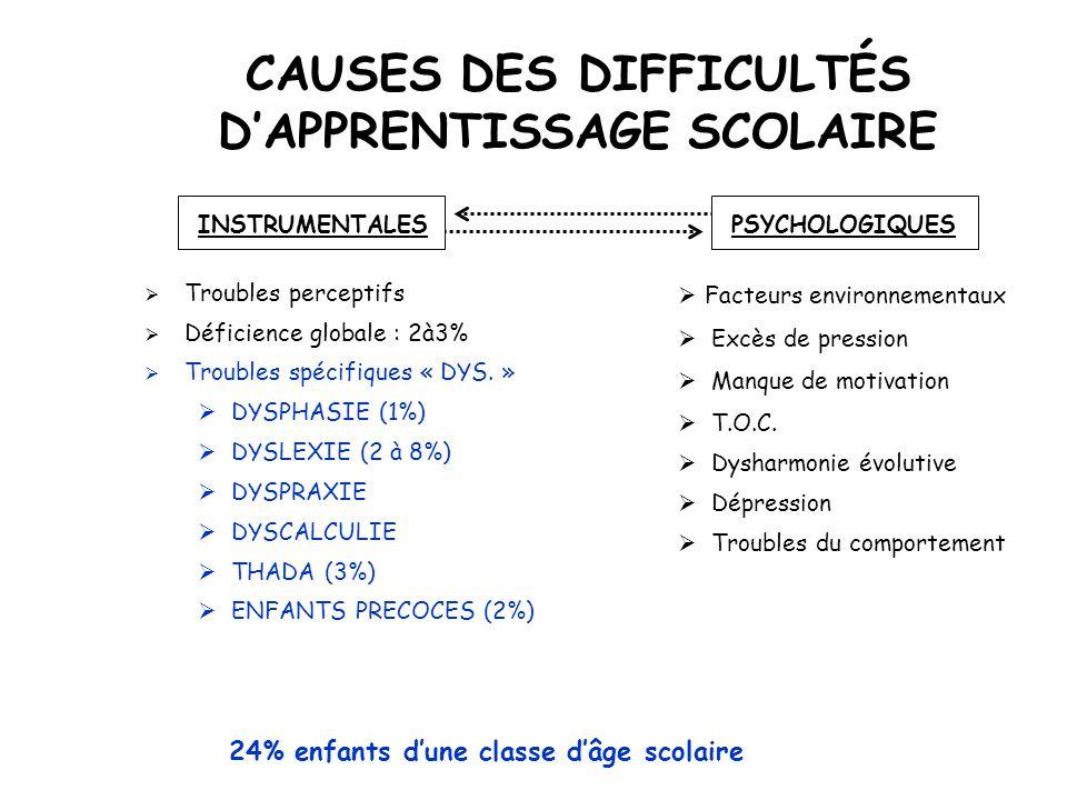 CAUSES DES DIFFICULTÉS D'APPRENTISSAGE SCOLAIRE