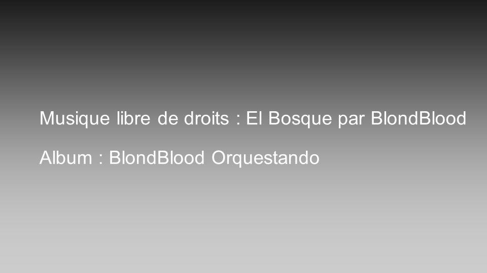 Musique libre de droits : El Bosque par BlondBlood