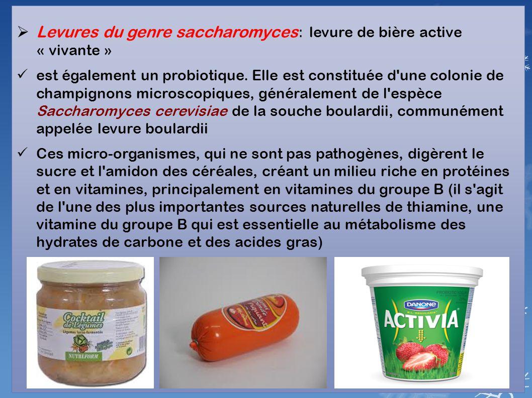 Levures du genre saccharomyces: levure de bière active « vivante »