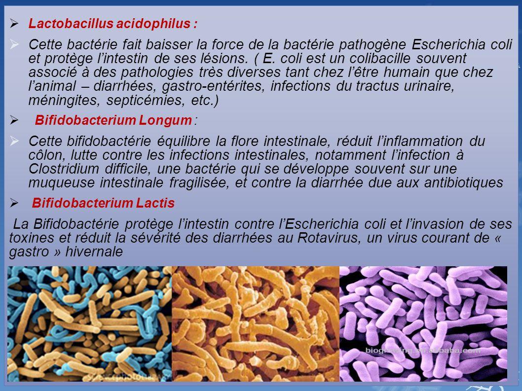 Lactobacillus acidophilus :