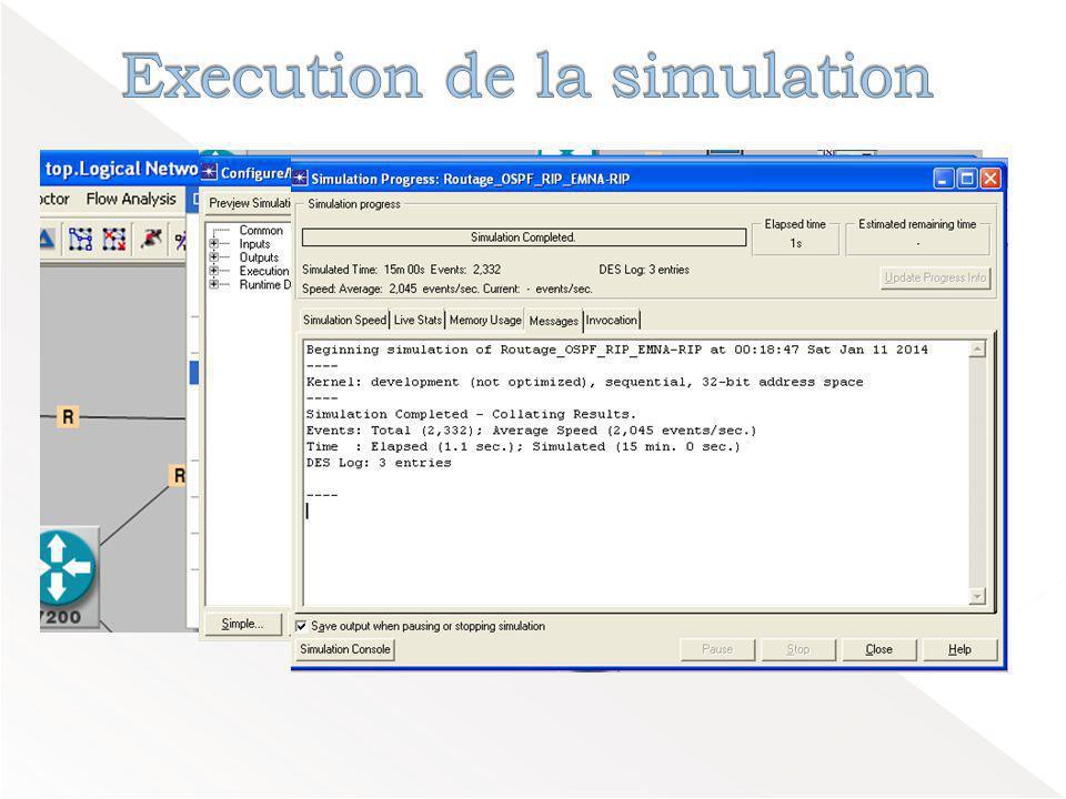 Execution de la simulation