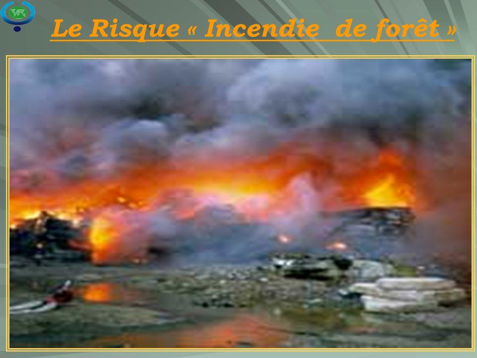 Le Risque « Incendie de forêt »