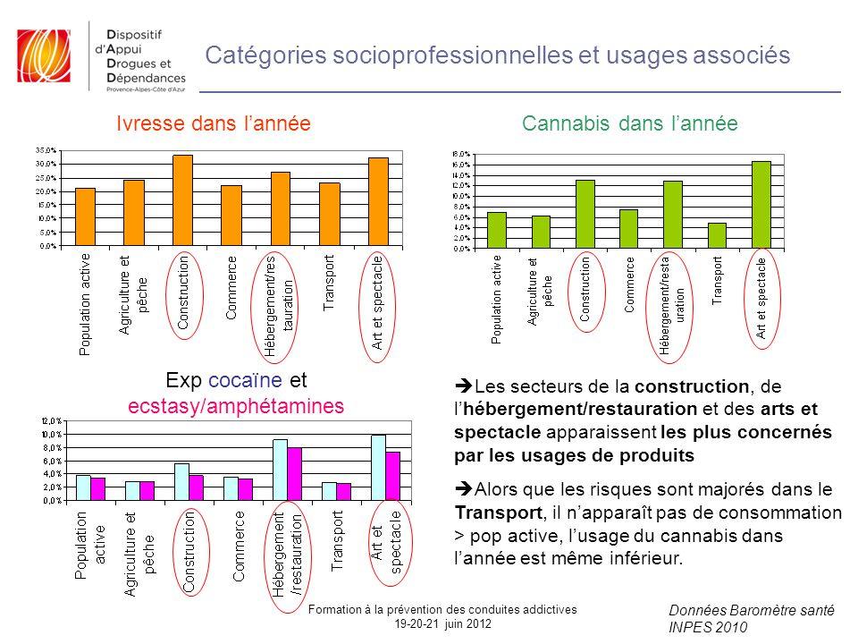 Catégories socioprofessionnelles et usages associés
