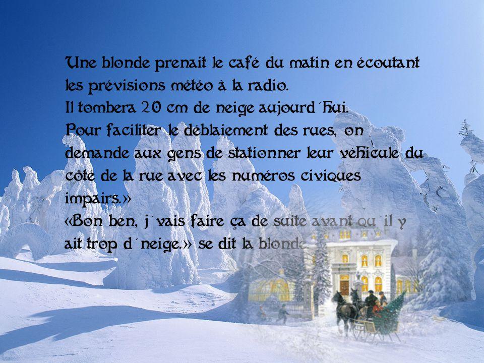 Une blonde prenait le café du matin en écoutant les prévisions météo à la radio. Il tombera 20 cm de neige aujourd hui.