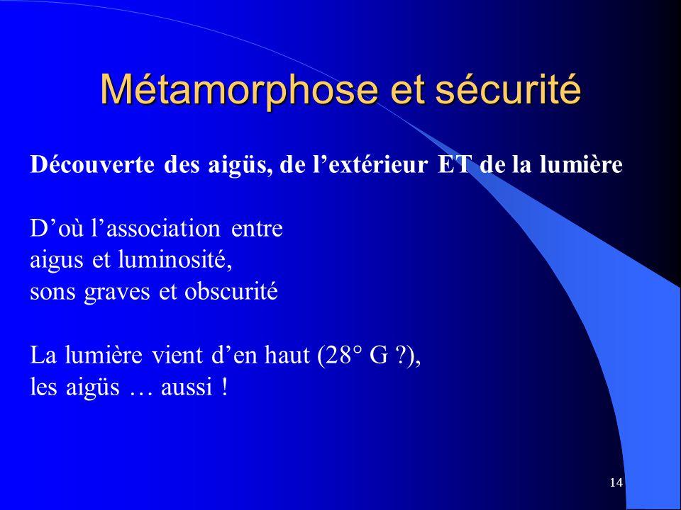Métamorphose et sécurité