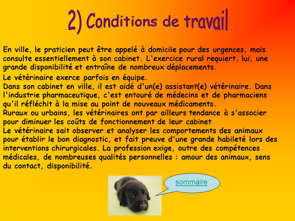 2) Conditions de travail