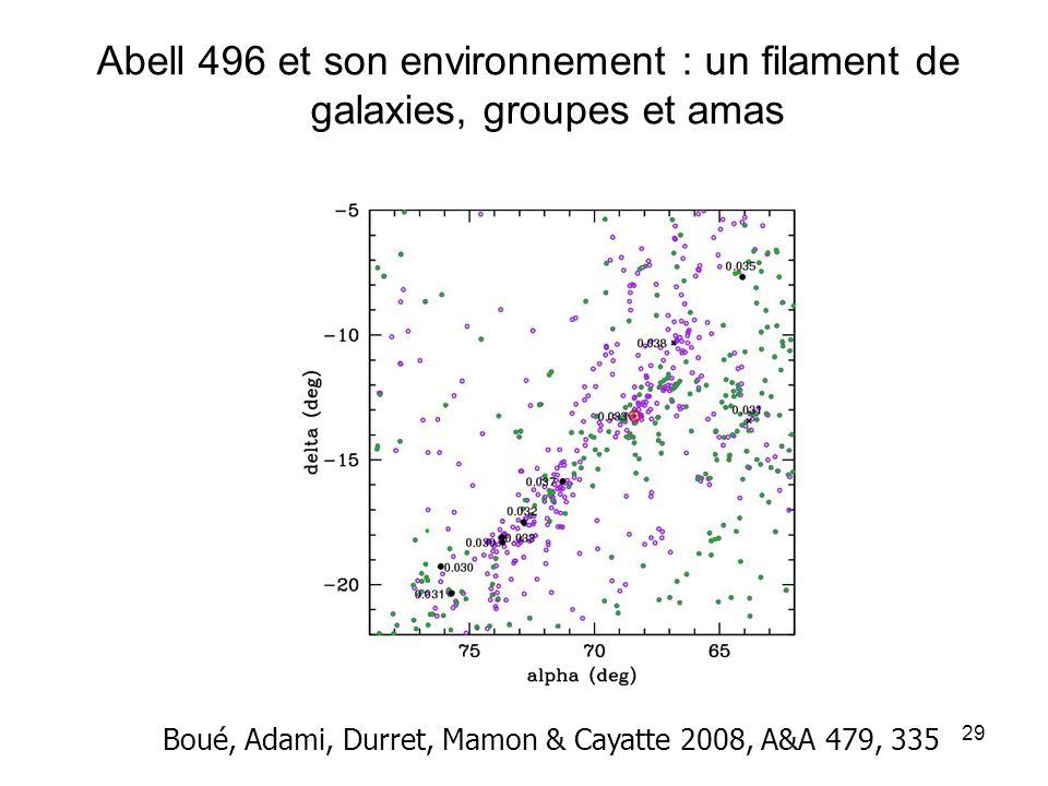 Abell 496 et son environnement : un filament de galaxies, groupes et amas