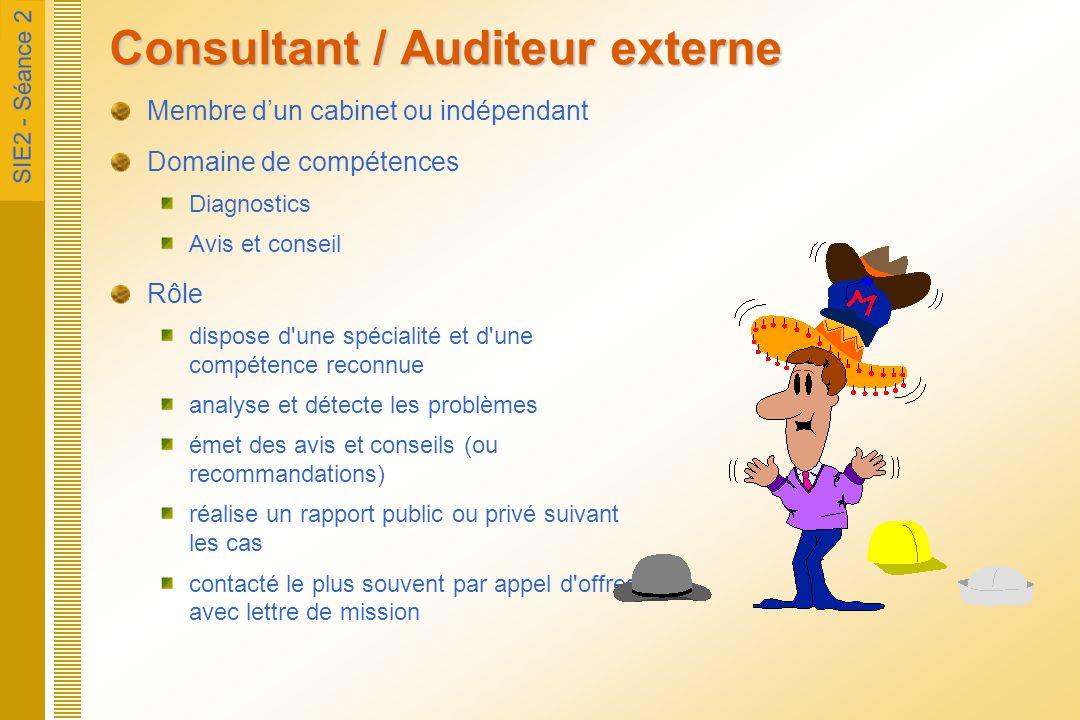Consultant / Auditeur externe