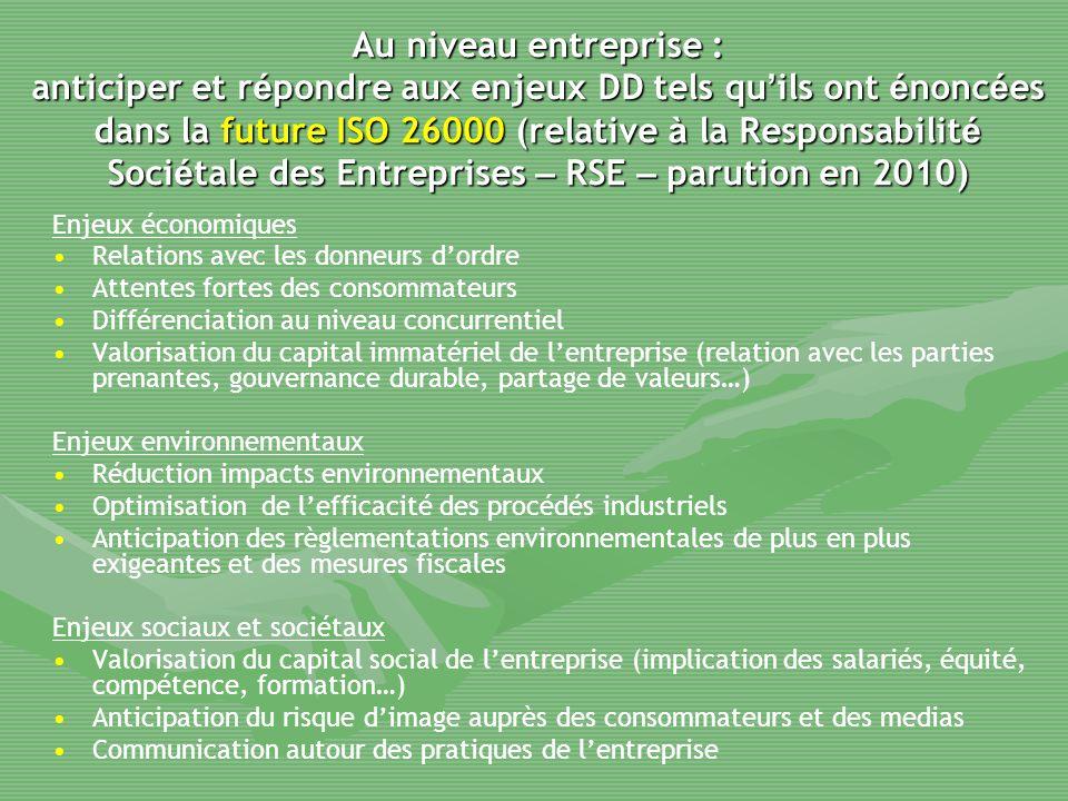Au niveau entreprise : anticiper et répondre aux enjeux DD tels qu'ils ont énoncées dans la future ISO 26000 (relative à la Responsabilité Sociétale des Entreprises – RSE – parution en 2010)