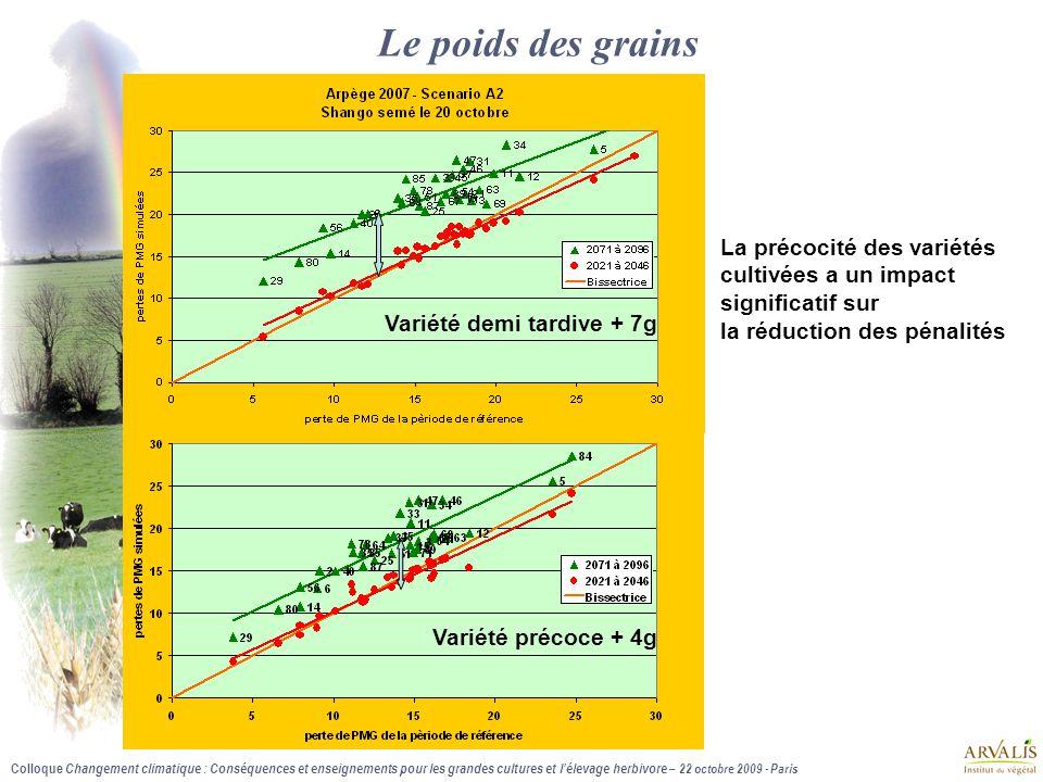 Le poids des grains La précocité des variétés cultivées a un impact