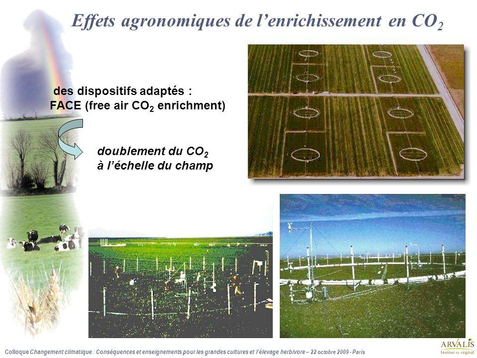 Effets agronomiques de l'enrichissement en CO2