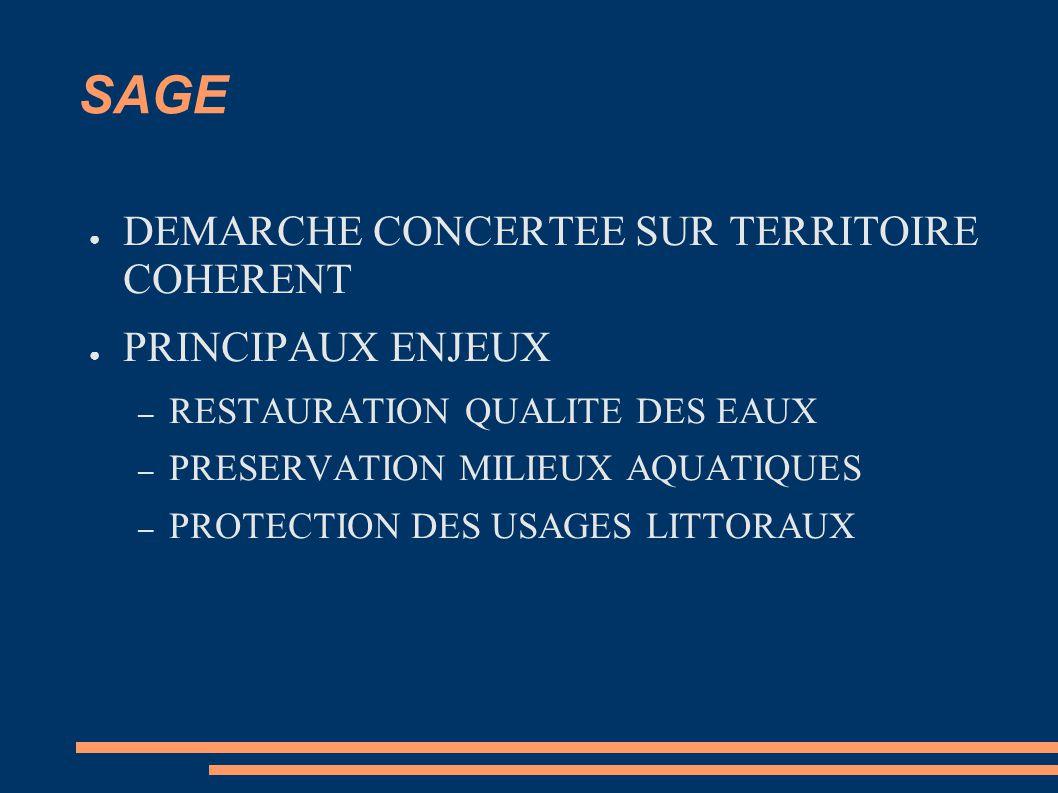 SAGE DEMARCHE CONCERTEE SUR TERRITOIRE COHERENT PRINCIPAUX ENJEUX