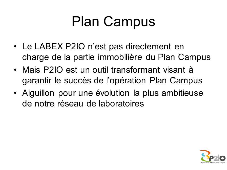 Plan Campus Le LABEX P2IO n'est pas directement en charge de la partie immobilière du Plan Campus.