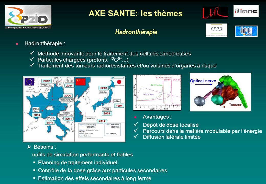 AXE SANTE: les thèmes Hadronthérapie Hadronthérapie :