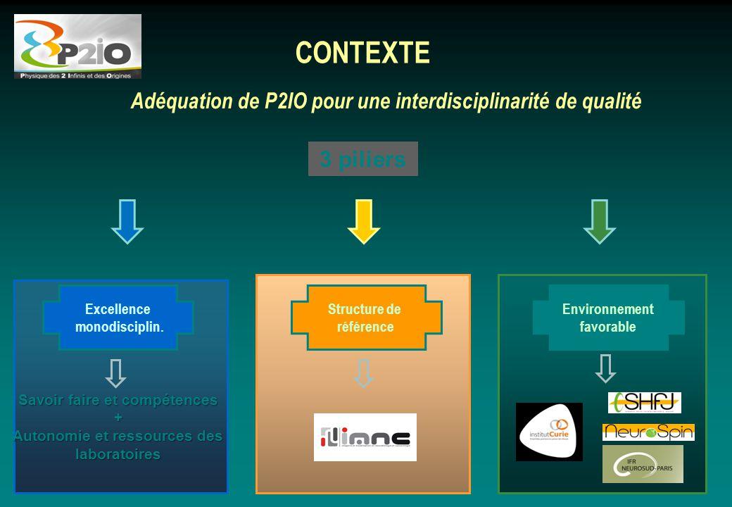 CONTEXTE Adéquation de P2IO pour une interdisciplinarité de qualité