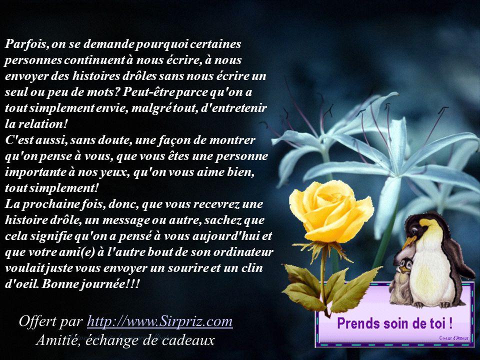 Offert par http://www.Sirpriz.com Amitié, échange de cadeaux