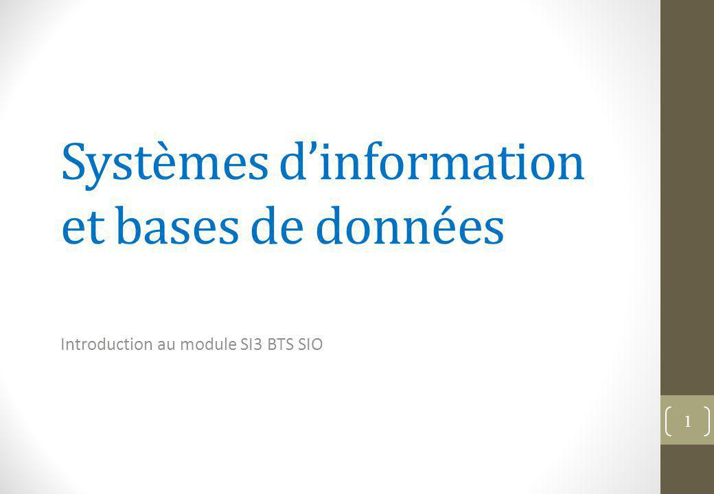 Systèmes d'information et bases de données