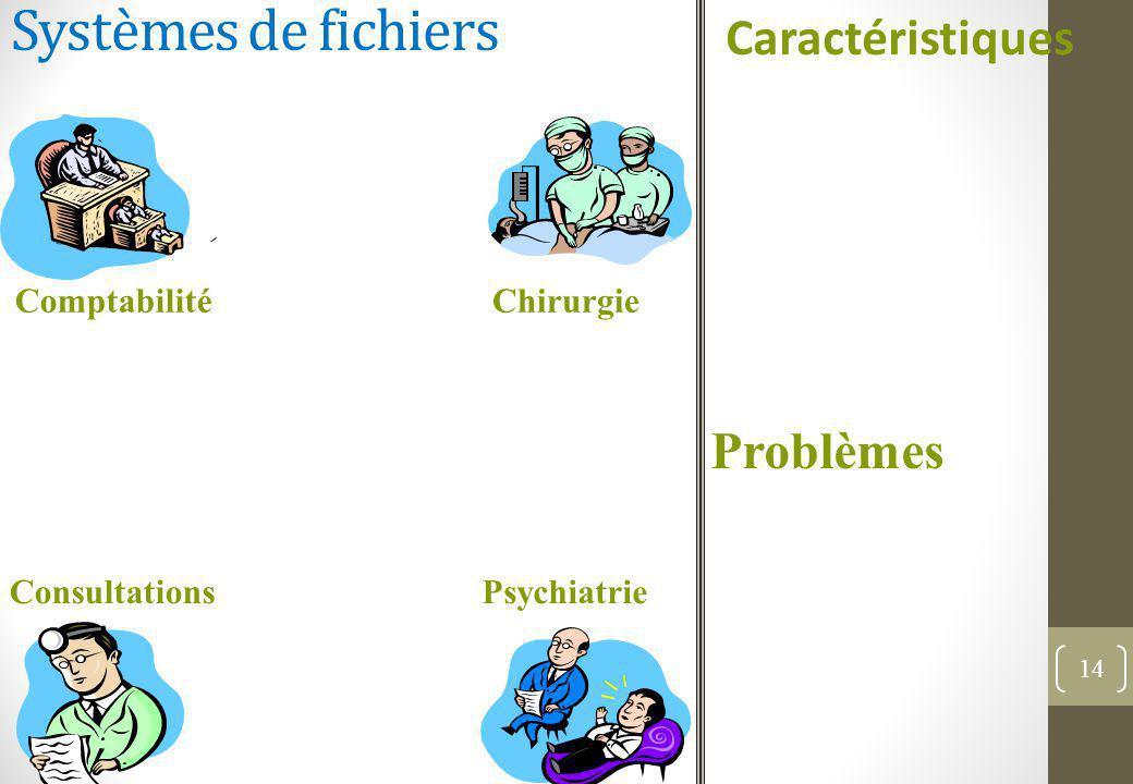 Systèmes de fichiers Caractéristiques Problèmes Comptabilité Chirurgie