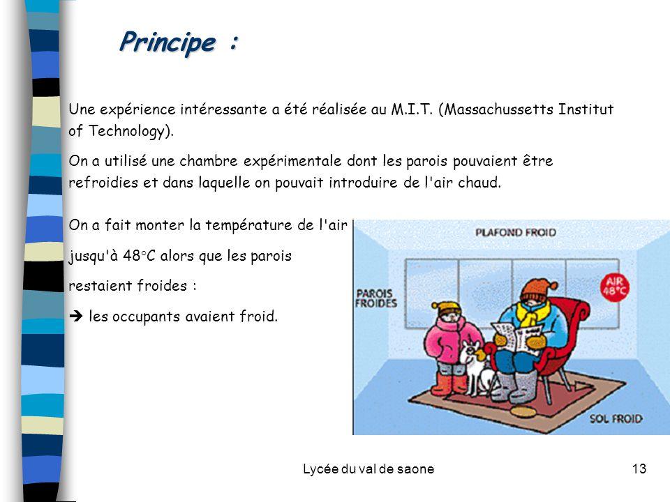 Principe : Une expérience intéressante a été réalisée au M.I.T. (Massachussetts Institut of Technology).