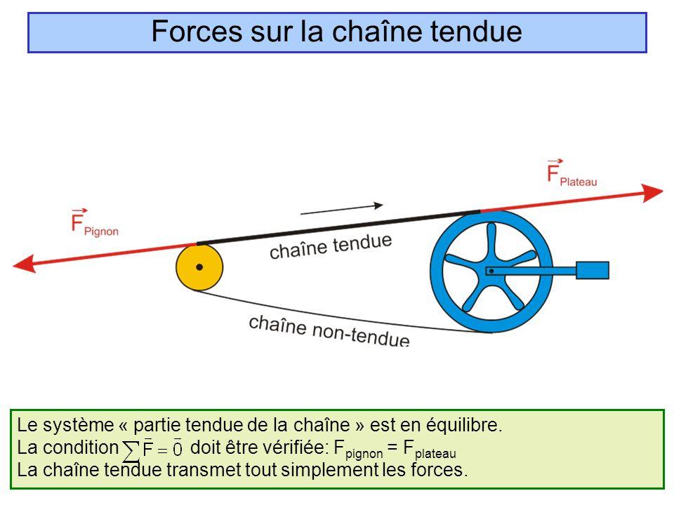 Forces sur la chaîne tendue