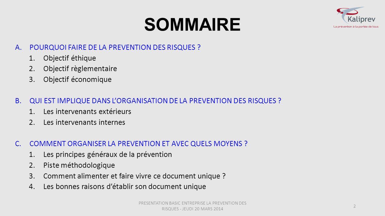 SOMMAIRE POURQUOI FAIRE DE LA PREVENTION DES RISQUES