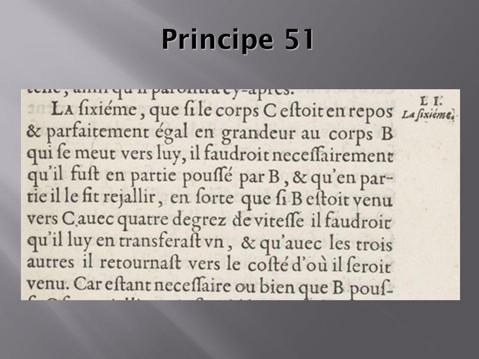 Principe 51