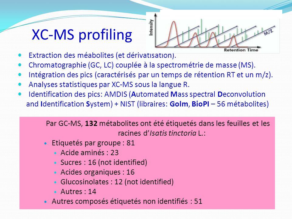 XC-MS profiling Extraction des méabolites (et dérivatisation).