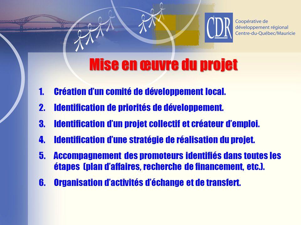 Mise en œuvre du projet Création d'un comité de développement local.