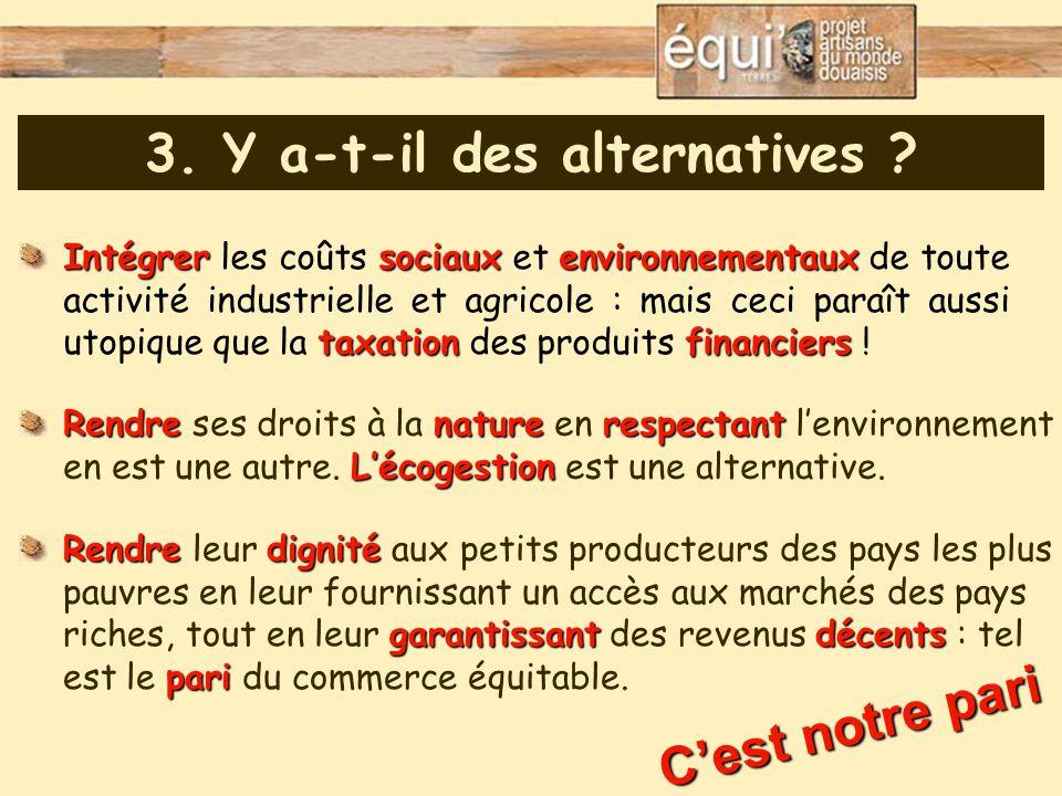 3. Y a-t-il des alternatives