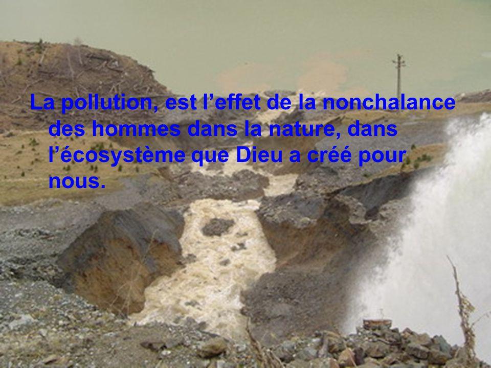 La pollution, est l'effet de la nonchalance des hommes dans la nature, dans l'écosystème que Dieu a créé pour nous.