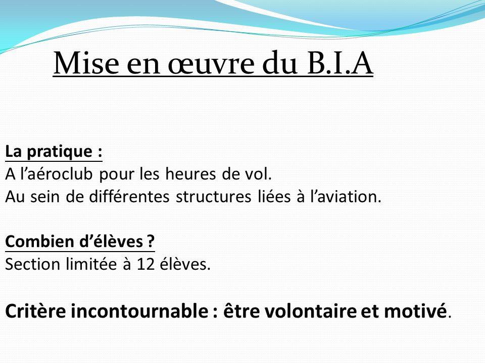 Mise en œuvre du B.I.A La pratique : A l'aéroclub pour les heures de vol. Au sein de différentes structures liées à l'aviation.