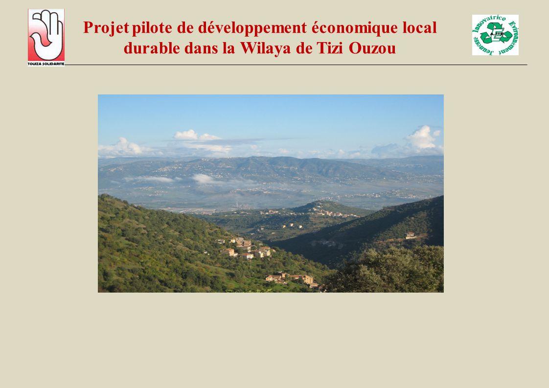 Projet pilote de développement économique local durable dans la Wilaya de Tizi Ouzou