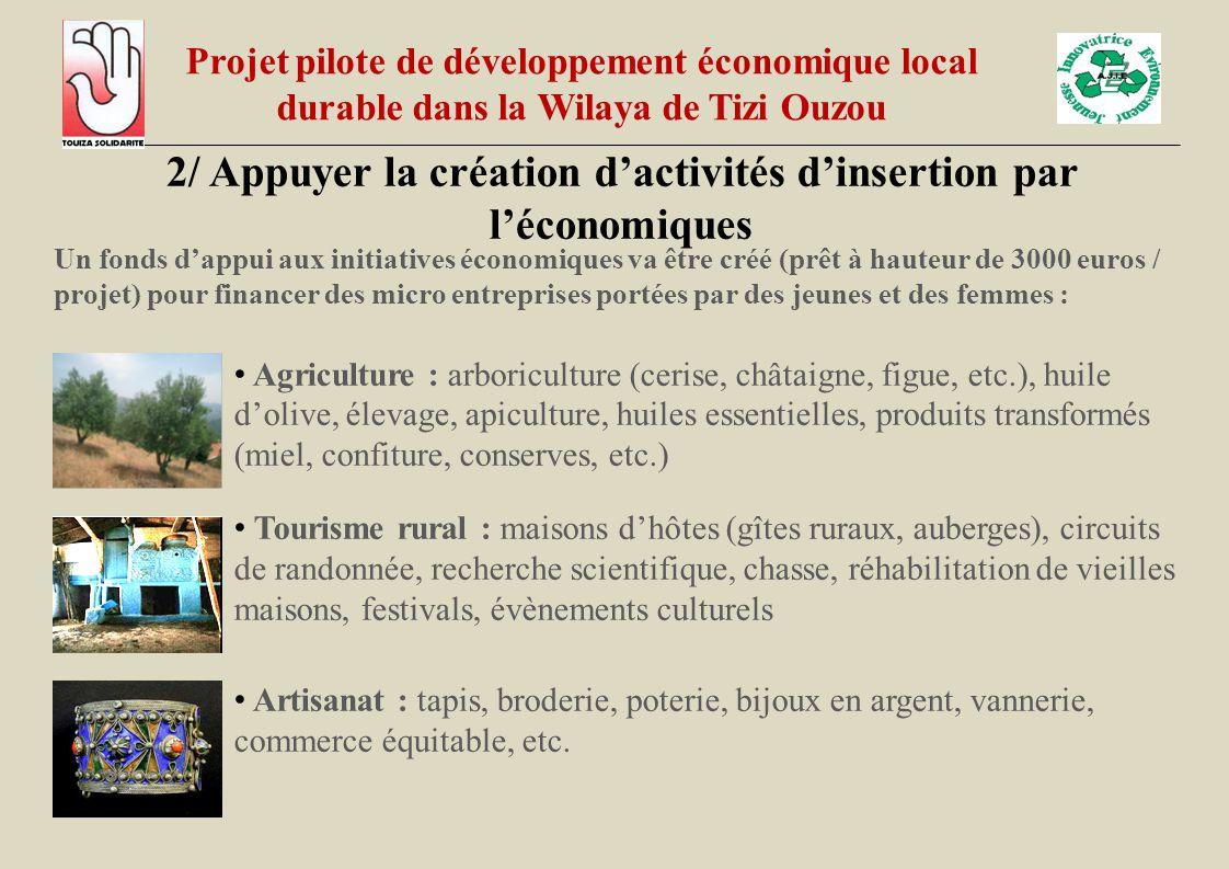 2/ Appuyer la création d'activités d'insertion par l'économiques