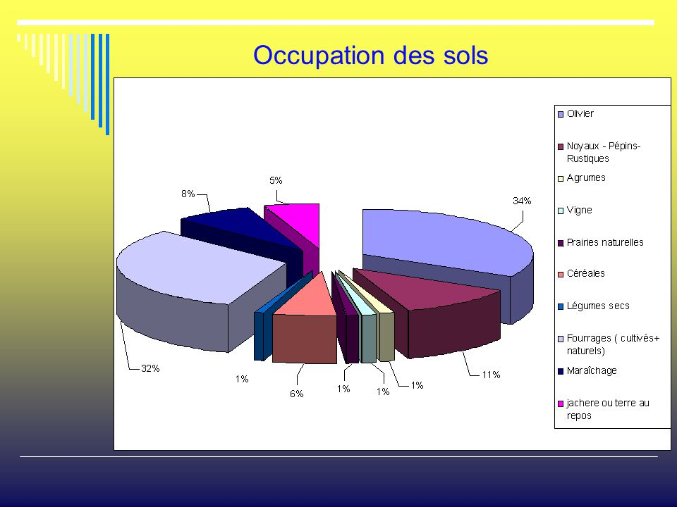 Occupation des sols