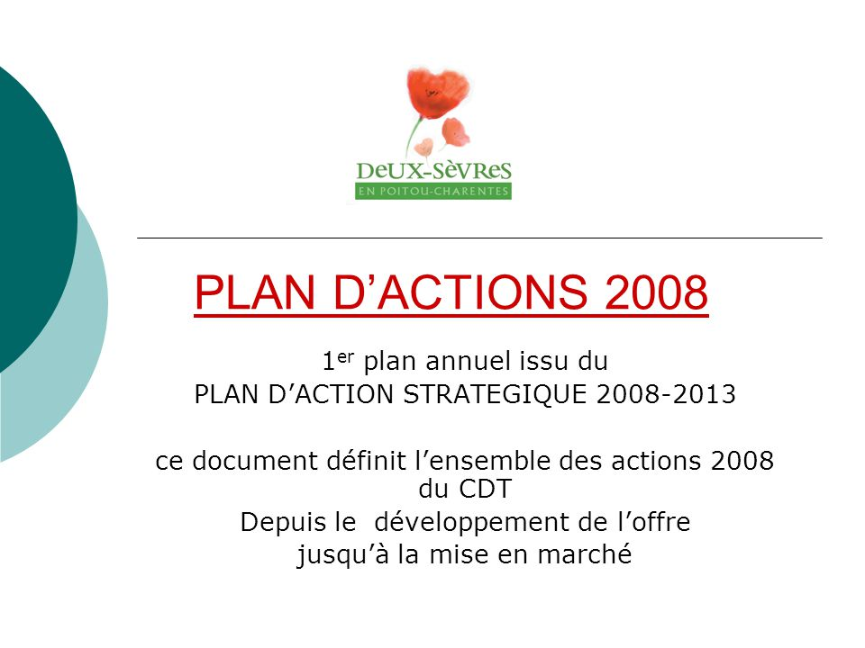PLAN D'ACTIONS 2008 1er plan annuel issu du