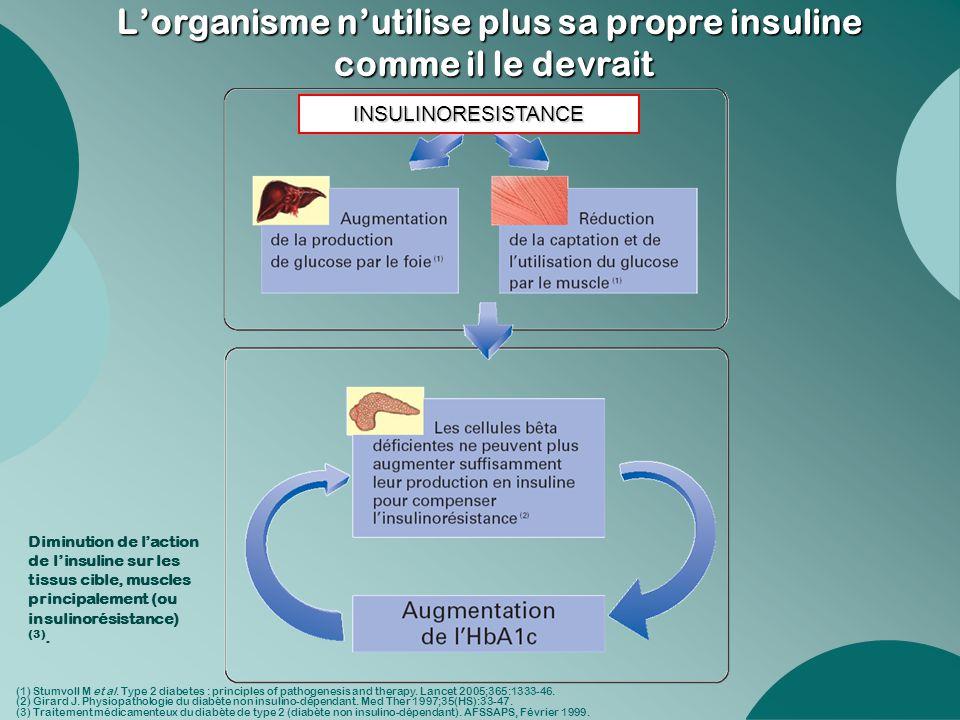 L'organisme n'utilise plus sa propre insuline comme il le devrait