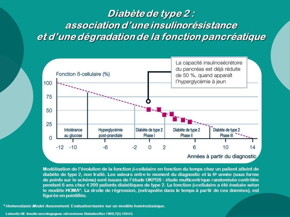 Diabète de type 2 : association d'une insulinorésistance et d'une dégradation de la fonction pancréatique