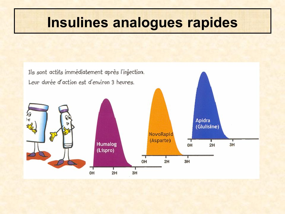 Insulines analogues rapides