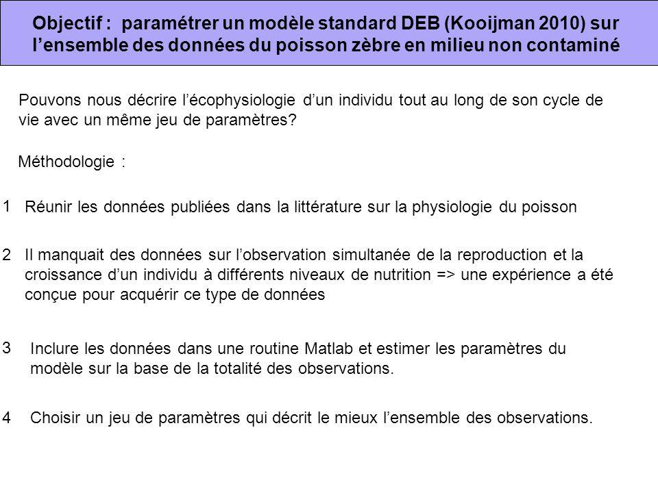 Objectif : paramétrer un modèle standard DEB (Kooijman 2010) sur l'ensemble des données du poisson zèbre en milieu non contaminé