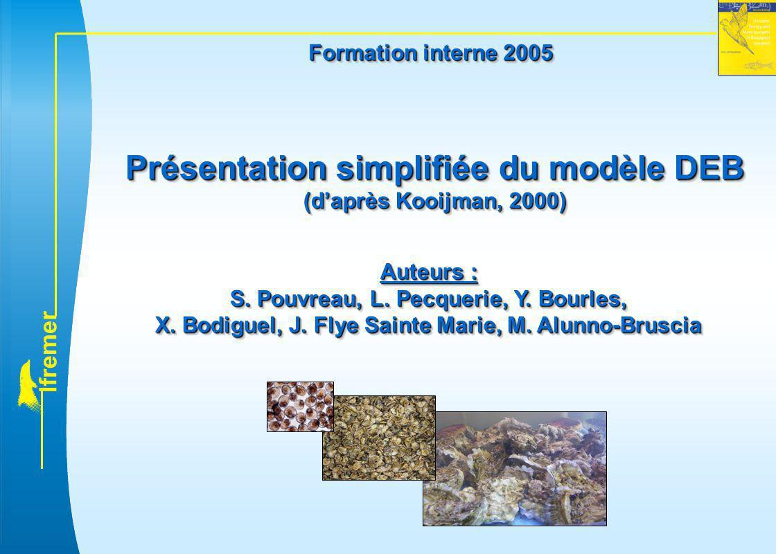 Présentation simplifiée du modèle DEB (d'après Kooijman, 2000)