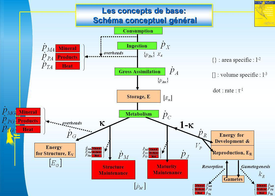 Les concepts de base: Schéma conceptuel général