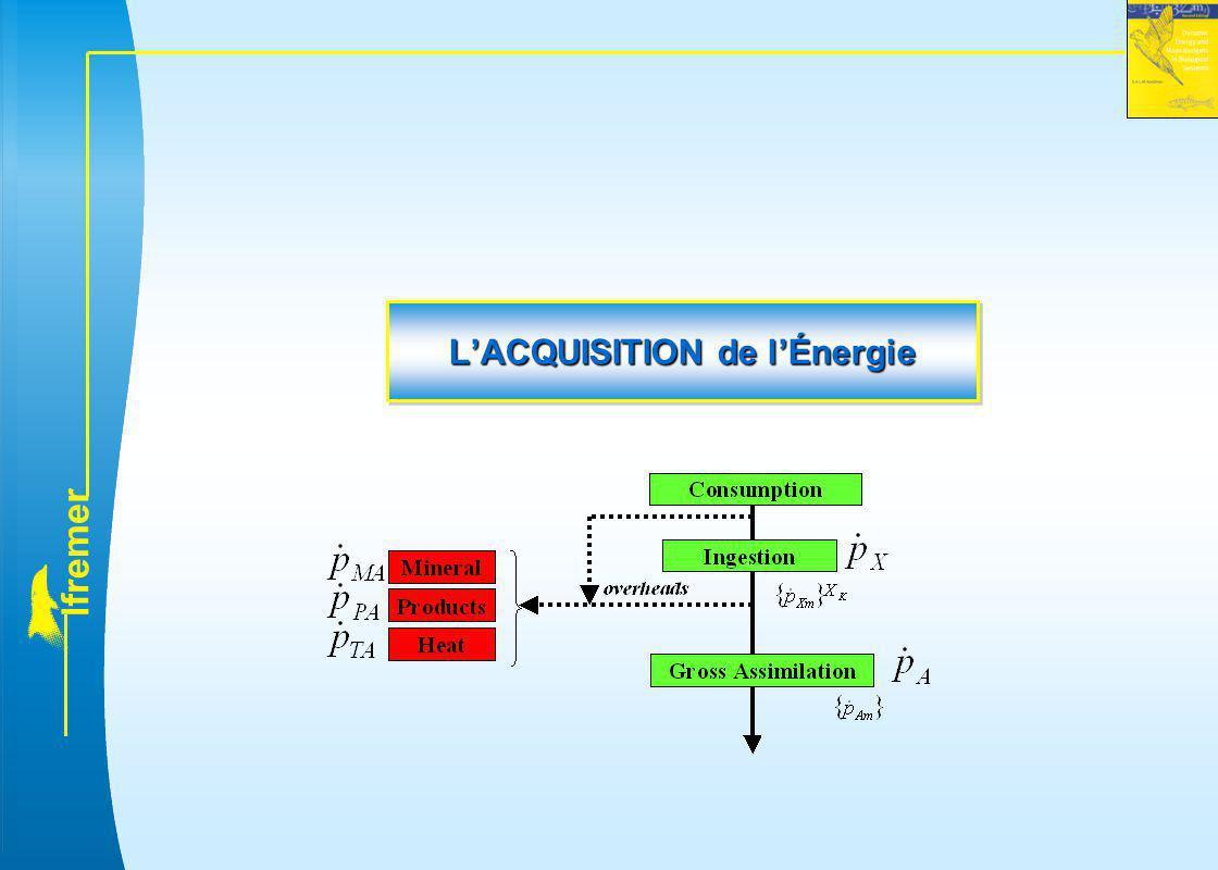 L'ACQUISITION de l'Énergie