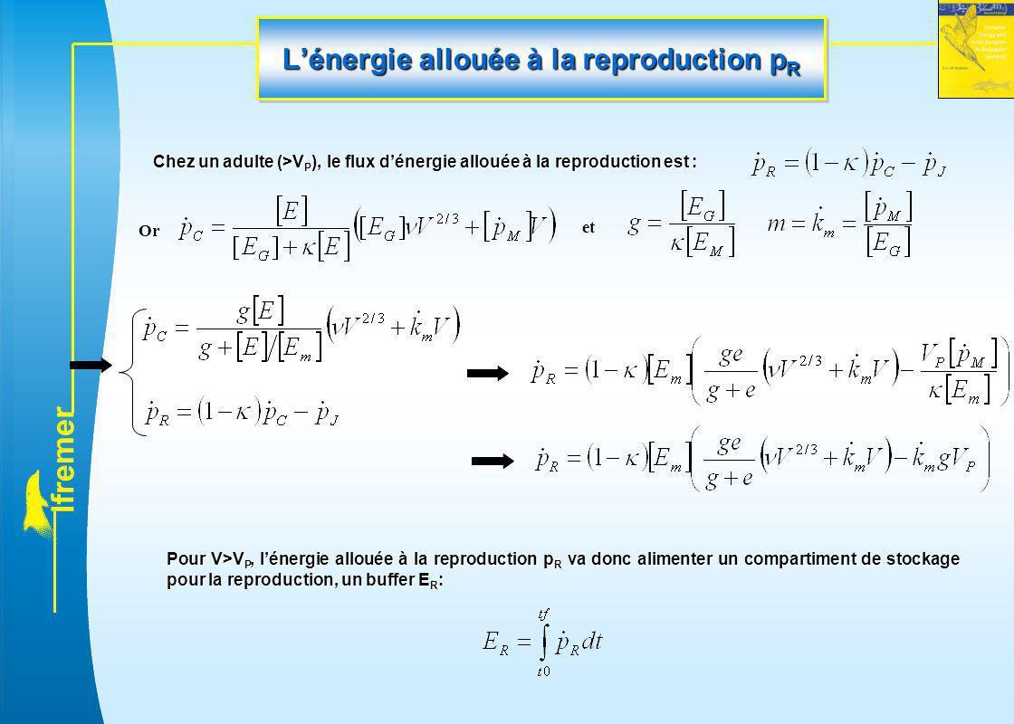 L'énergie allouée à la reproduction pR