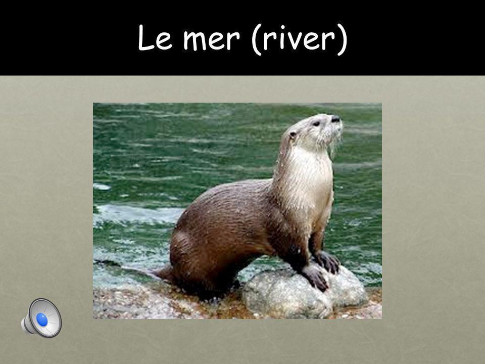 Le mer (river)
