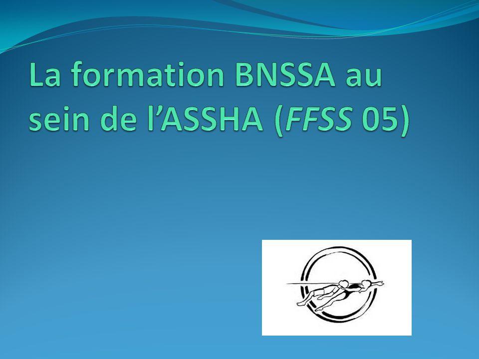 La formation BNSSA au sein de l'ASSHA (FFSS 05)