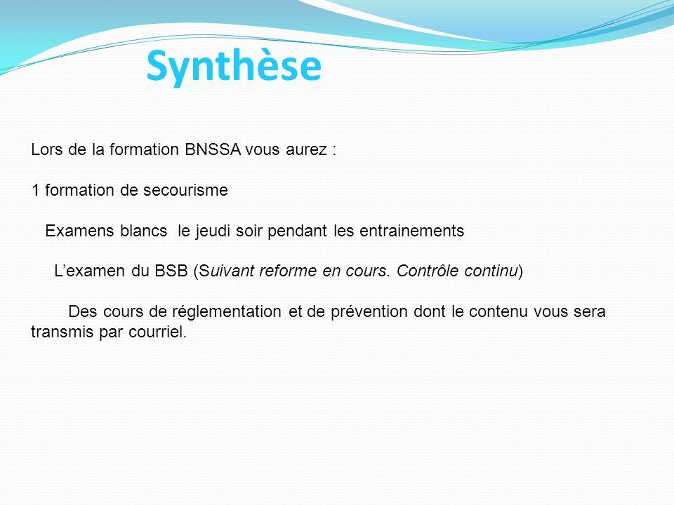 Synthèse Lors de la formation BNSSA vous aurez :