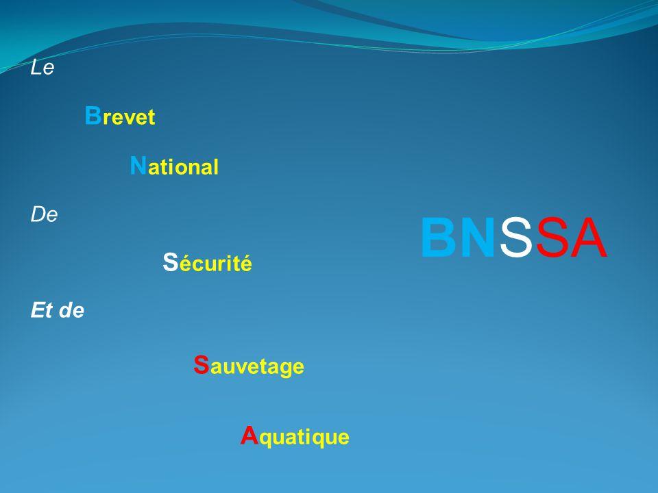 Le Brevet National De Sécurité Et de Sauvetage Aquatique BNSSA