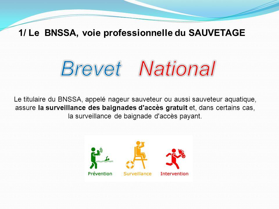 1/ Le BNSSA, voie professionnelle du SAUVETAGE